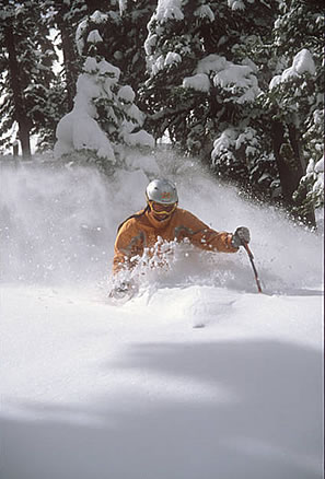 squaw_valley_powder_skiing_picture.jpg